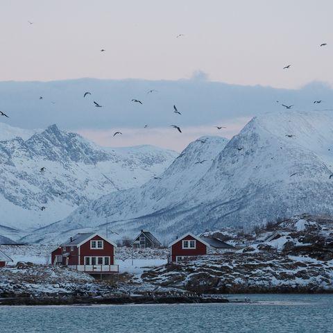 Einsame Idylle in Norwegen @ Lea Ponzle, Oceanwide.com, Norwegen