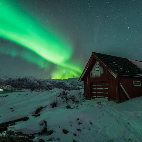 Einzigartige Nordlichter im Norden Norwegens @ Johan Vesters, Oceanwide.com, Norwegen