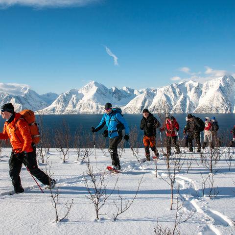 Ausflug auf dem Festland (Option B), Norwegen