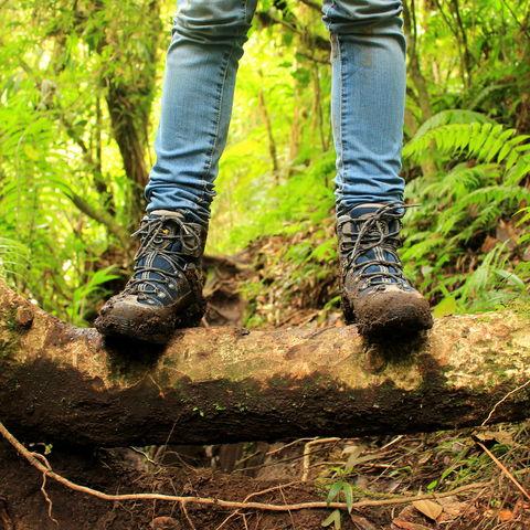 """Dschungelwanderung auf dem """"Lost Waterfalls Wanderweg"""
