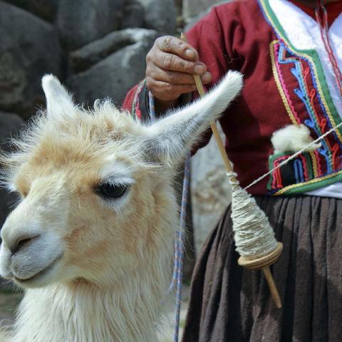 Peruanische Frau mit Lama, Peru