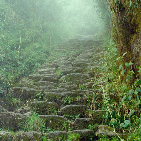 Steintreppe am Inka-Trail, Peru