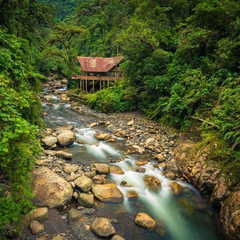 Dschungellodge im Manu Nationalpark, Peru