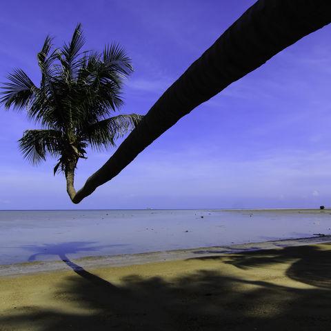 Dem Horizont entgegen, Seychellen