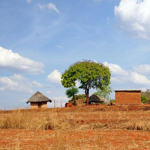 Ein bäuerliches Dorf, Simbabwe