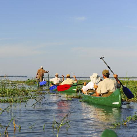 Ein Abenteuer: Kanufahrt auf dem Sambesi Fluss, Simbabwe