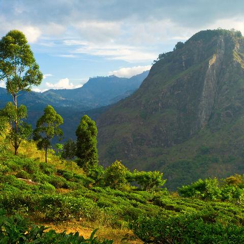 Reizvolle Landschaft bei Ella im Hochland, Sri Lanka