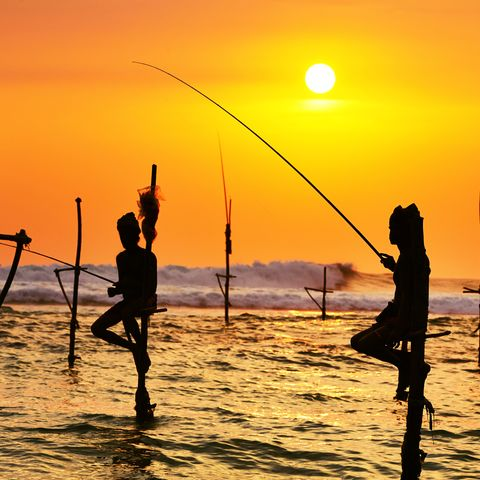 Silhouetten der traditionellen Fischer, Sri Lanka