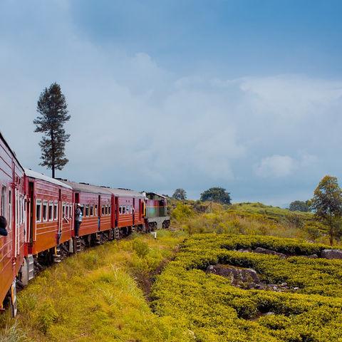 Per Zug durchs Hochland, Sri Lanka