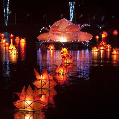 Schwimmende Laternen während des Vesakh Festes, Jaffna, Sri Lanka