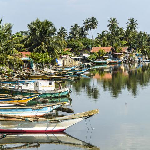 Idyllischer Küstenstreifen, Sri Lanka