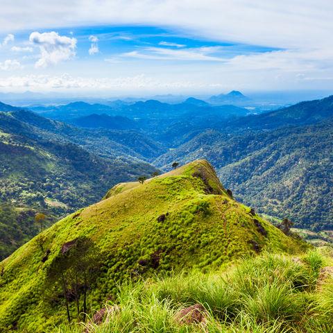Oben angekommen: Little Adam's Peak, Ella, Sri Lanka