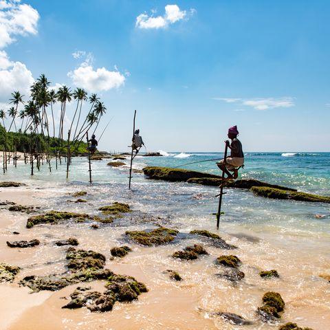 Stelzenfischer am Strand von Mirissa, Sri Lanka