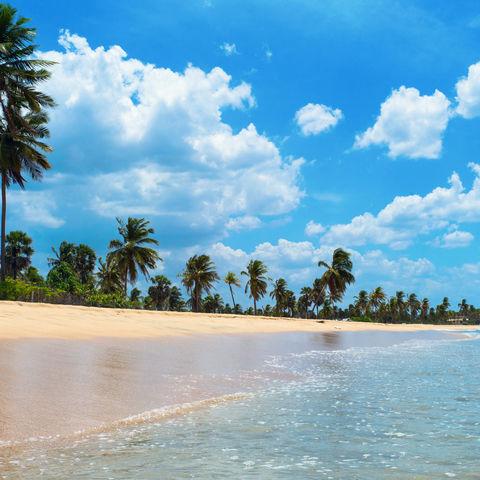Strand bei Trincomalee an der Ostküste, Sri Lanka