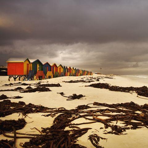 Farbige Hütten am Strand von Muizenberg bei Kapstadt, Südafrika