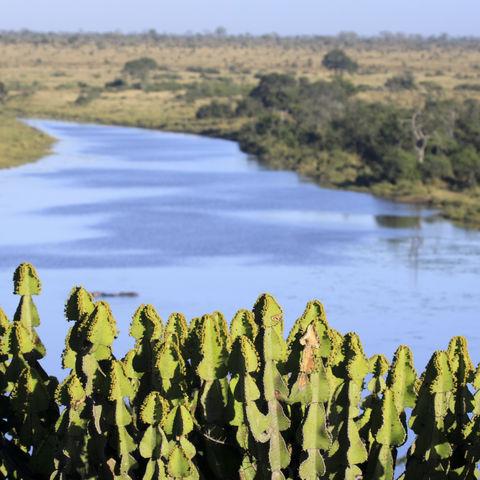 Mlondozi-Damm im Krüger Nationalpark, Südafrika