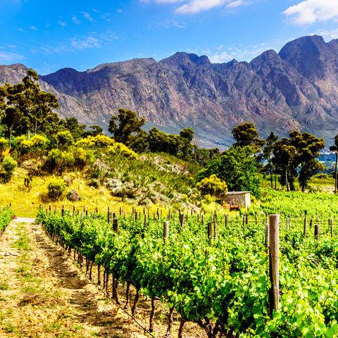 Malerische Weingüter inmitten einer wildromantischen Berglandschaft, Franschhoek Valley, Südafrika