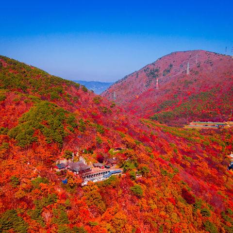 Beomeosa Tempel in der herbstlichen Umgebung von Busan, Südkorea