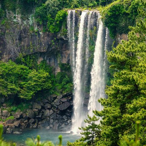 23 m hoch: Jeongbang Wasserfall, Jeju, Südkorea