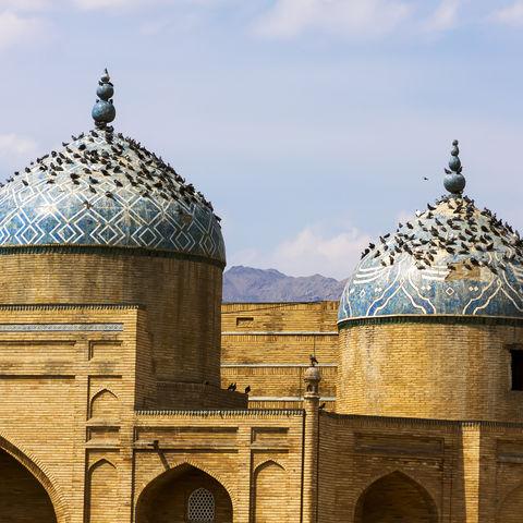 Tauben auf den Dächern einer Moschee, Tadschikistan