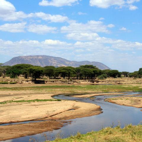 Great Ruaha River im Ruaha-Nationalpark, Tansania