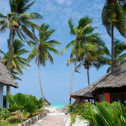 Palmen und Häuser am Strand, Tansania