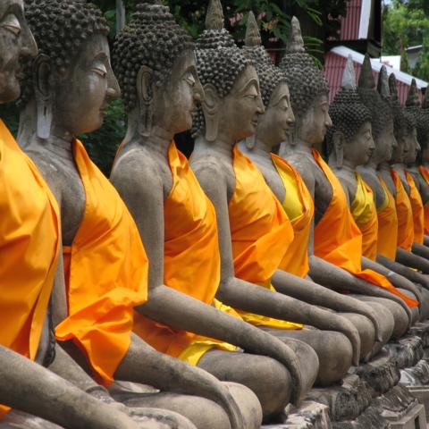 Willkommenheißung: Buddha-Statuen in Ayutthaya, Thailand