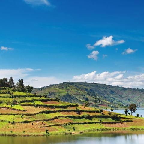 Einer der schönsten Seen Afrikas: Bunyonyi Lake mit seiner malerischen Hügellandschaft, Uganda