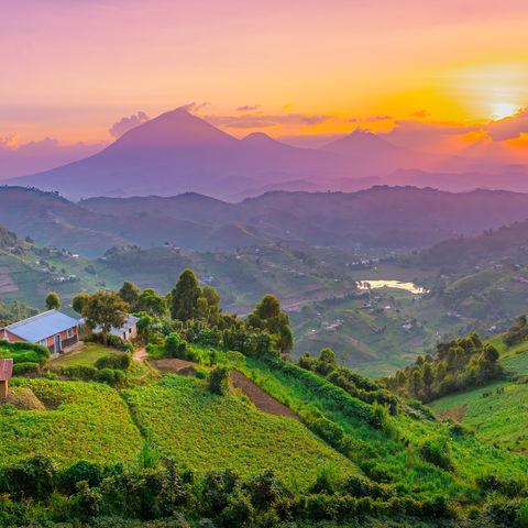 Magischer Sonnenuntergang über Kisoro, Uganda