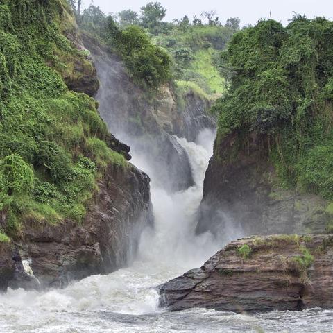 Die idyllischen Murchison Falls, Uganda