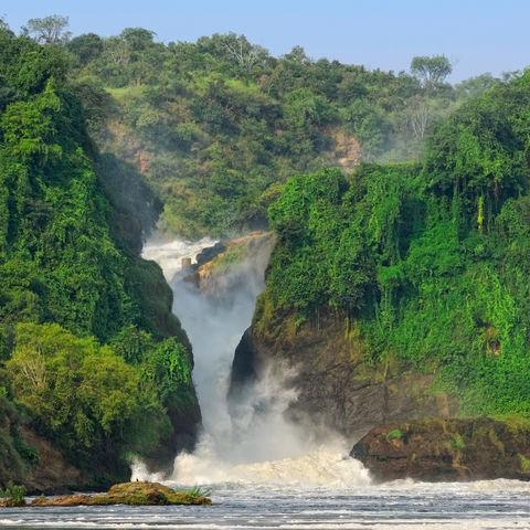 Tosende Murchison Wasserfälle im Murchison Falls Nationalpark, Uganda