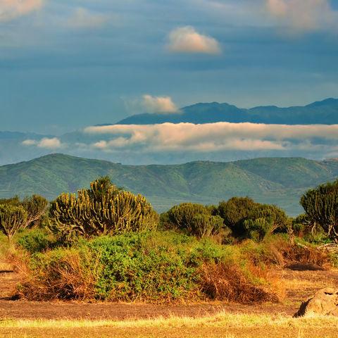 Landschaft des Queen Elizabeth Nationalpark, Uganda