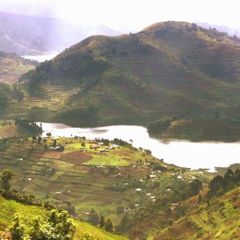 Ausblick auf die Virunga Mountains, Uganda