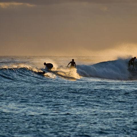 Beliebte Surfdestination: Wellenreiter im Pazifik, Hawaii