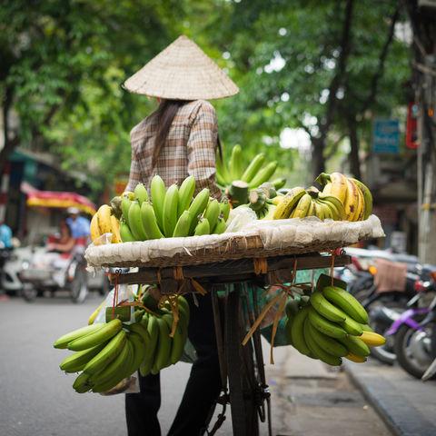 Obstverkäufer in Hanoi © Vinh Dao, Dreamstime.com