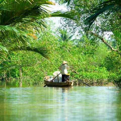 Zwischen Palmen und Obstplantagen: Tropisches Mekong Delta, Vietnam