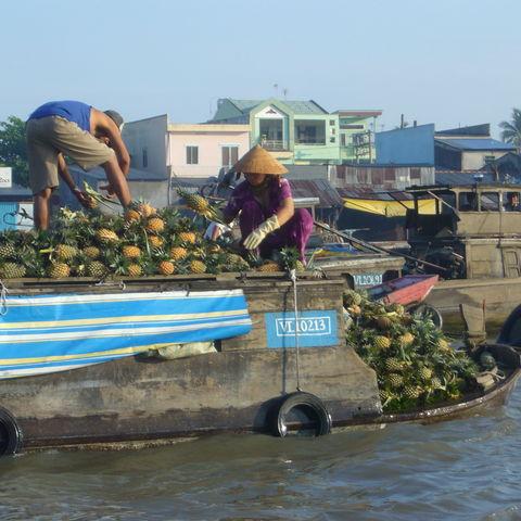 Ananasverkäufer auf dem Mekongdelta, Vietnam