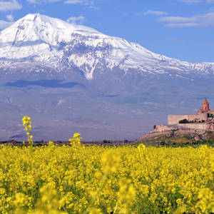 Blick auf das Kloster Chor Virap und den Vulkan Ararat © Evgovorov, Dreamstime.com