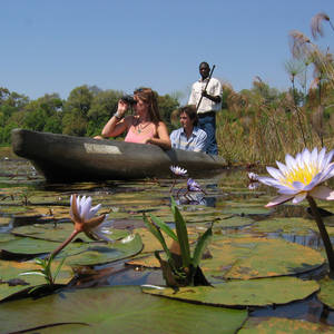 Mokoro-Safari im Okavangodelta © Jenman Safaris