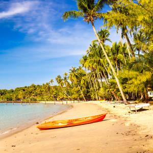 Tropischer Strand an der Küste © Cocosbounty, Dreamstime.com