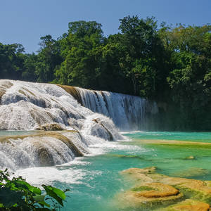 Paradiesische Agua Azul-Wasserfälle © Igor Dymov, Dreamstime.com