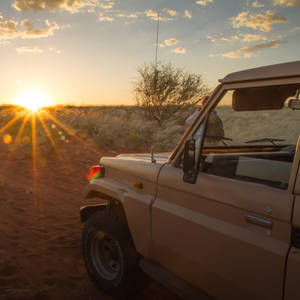 Safari bei Sonnenaufgang © Moreno Novello, Dreamstime.com