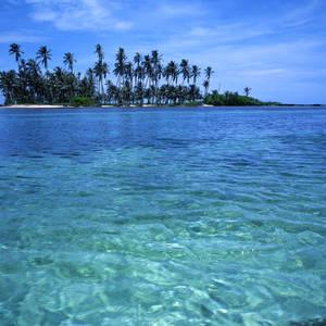 Palmeninsel im San-Blas-Archipel © Erikgauger, Dreamstime.com