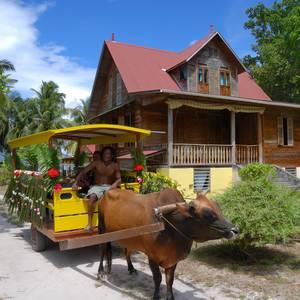 Ochsenkarren und altes Haus © FVA Seychellen, Gerard Larose