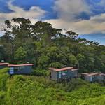 Komfortable Schiffscontainer der Rainforest Lodge © Rainforest Lodge