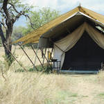 Safarizelt im Serengeti Nationalpark © Hel080808, Dreamstime.com